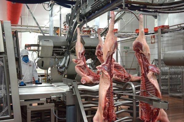 Litera Meat, impulso económico para el territorio