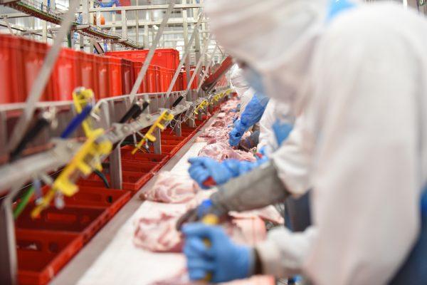 Nuevo curso en Litera Meat sobre Sacrificio, Faenado y Despiece de Animales
